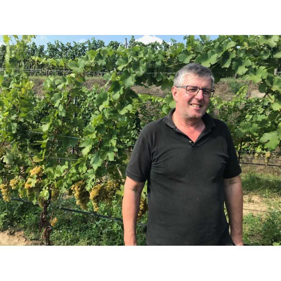 BIO Weingut Grillmayer Langenlois verwendet WEINKRAFT Pulver mit Zeolith und Pellets für den Boden