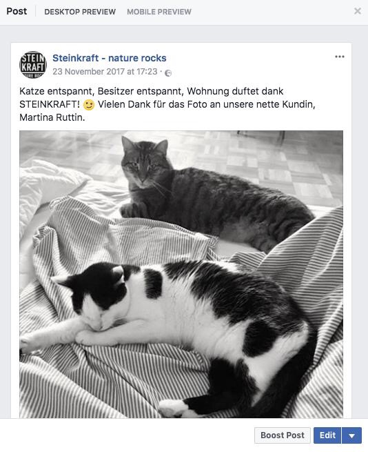Smellwell kommt bei Katzen und Kundin gut an
