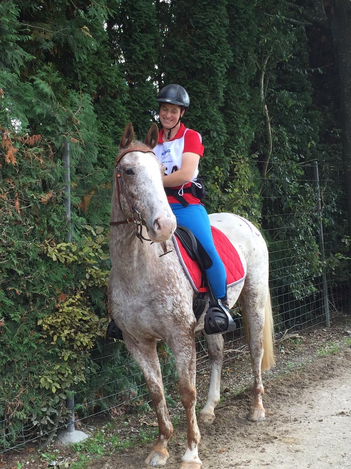 Stefanie_Kreienbuehl_Pferde_Expertin_Schweiz